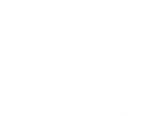 Flex Sikhi Logo